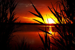 jeziorny wschód słońca Zdjęcie Stock