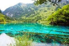 jeziorny wuhua Zdjęcie Royalty Free