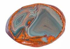 Jeziorny Wyższy agat - Makro- Odosobniony na bielu Obraz Stock