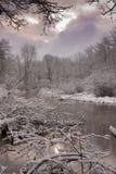 jezioro śnieżny Fotografia Royalty Free