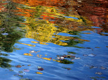 jezioro abstrakcyjne jesienią fotografia royalty free