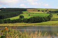 Jezioro blisko Pately mosta North Yorkshire obraz royalty free