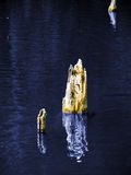 jezioro chodzi tupiąc Obraz Royalty Free