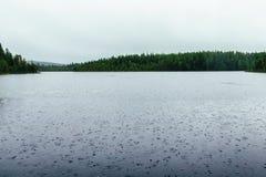 Jezioro deszcz obrazy royalty free