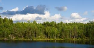 jezioro drewna Obrazy Royalty Free