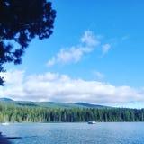 Jezioro drewna zdjęcia royalty free