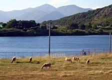 Jezioro Fondi, Włochy Zdjęcia Stock
