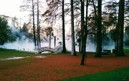 Jezioro Garda zdrój zdjęcia royalty free