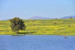 Jezioro i łąki w wzgórze golan fotografia royalty free