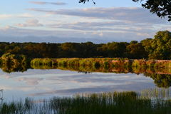 Jezioro i cienie Obraz Stock