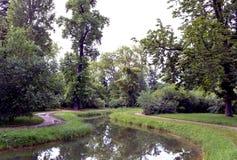 Jezioro i drzewa Zdjęcia Royalty Free