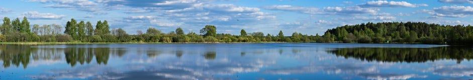 Jezioro i drzewa w lecie obrazy royalty free