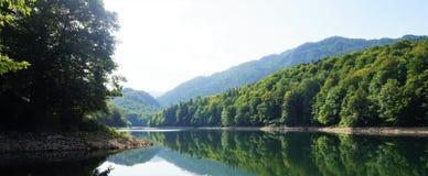 Jezioro i las Obraz Royalty Free
