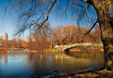 Jezioro i Most Obraz Stock