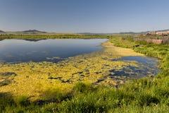 Jezioro i wzgórza Fotografia Stock