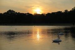 Jezioro i zmierzch zdjęcie stock