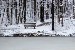 jezioro jest ławki krawędzi Zdjęcia Stock