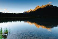 jezioro kiść Fotografia Royalty Free