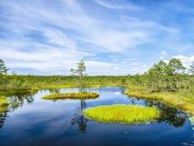 Jezioro krajobraz blisko Tallinn Zdjęcia Royalty Free