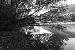 Jezioro krajobraz, czarny i biały Zdjęcia Royalty Free