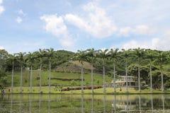 Jezioro krajobraz w parku Caracas, Wenezuela zdjęcia stock