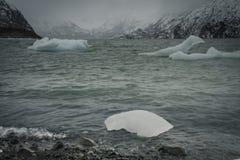 Jezioro lód Zdjęcie Stock
