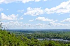 Jezioro, las i niebo, Obraz Stock