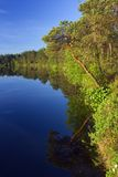 jezioro lato Obraz Royalty Free