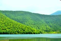Jezioro między lasem Fotografia Royalty Free