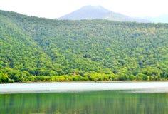Jezioro między lasem Obrazy Royalty Free