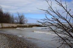 jezioro michigan lodowaty brzeg Fotografia Stock