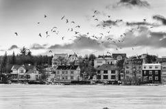 jezioro, mrożone Zdjęcia Royalty Free