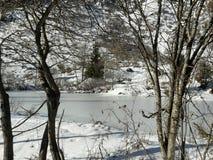 jezioro, mrożone Obraz Stock