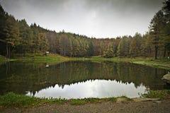 Jezioro nynph Obrazy Royalty Free