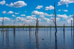 Jezioro Odbija niebieskie niebo Above Fotografia Stock