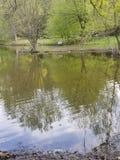 jezioro odzwierciedlający obrazy royalty free