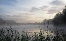 Jezioro okrywający w ranek mgiełce Zdjęcia Royalty Free