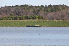 Jezioro otaczaj?cy drzewami i greenery zdjęcia royalty free
