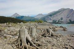 Jezioro otaczający góry Laugheed prowincjonału parkiem Kanada Fotografia Royalty Free