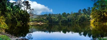 Jezioro panoramiczny widok Obrazy Royalty Free