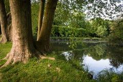 Jezioro parc Obraz Royalty Free