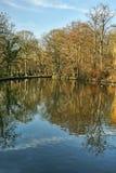 jezioro park Zdjęcia Stock