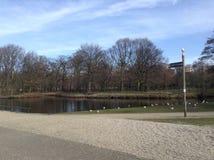 Jezioro park w Haga Zdjęcie Stock