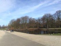 Jezioro park w Haga Fotografia Stock