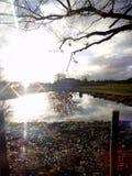 Jezioro pod słońcem Zdjęcie Royalty Free