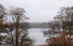 Jezioro Powidzkie i centrala Polen Royaltyfria Foton