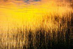 Jezioro powierzchni łuny z wczesnym wschodu słońca światłem na wodzie ukazują się przy linią brzegową obraz stock