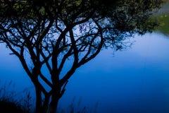Jezioro przez cieni 2 Zdjęcie Royalty Free