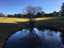 Jezioro przy Fagan parkiem Fotografia Stock