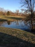Jezioro przy parkiem Obrazy Royalty Free